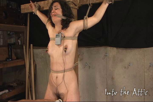 Zayda cant live without Bdsm Part 8