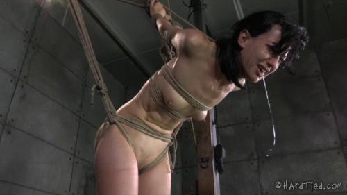 Bondage Therapy Part 2  - Elise Graves, Jack Hammer