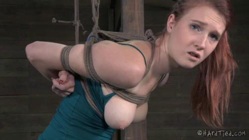 Ashley Lane - Caned Lane BDSM