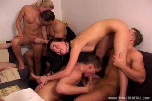 Entertained guests orgy
