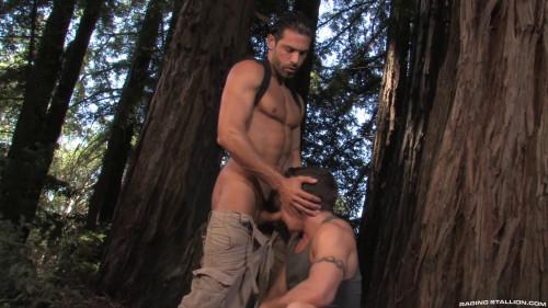 The Woods Part 2 - 1080p