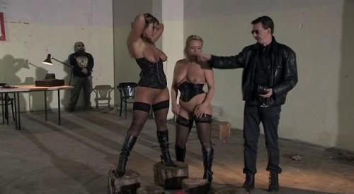 Stray Cats BDSM