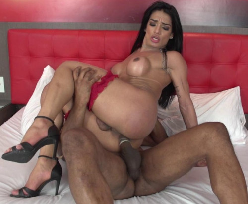 Beauty TS Babe Carol Martins Enjoys Interracial Anal