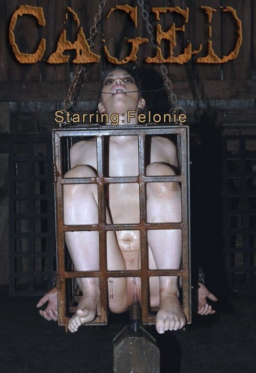 Felonie BDSM