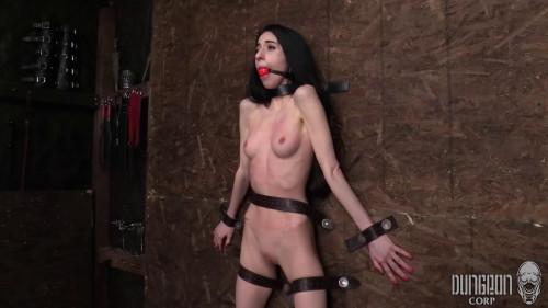 HD Bdsm Sex Videos Pretty And Petite BDSM
