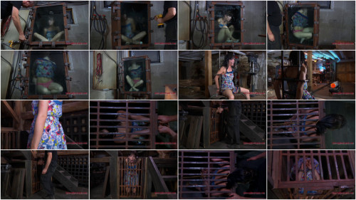 Curious Elise - Elise Graves - Part 1 - HD 720p BDSM