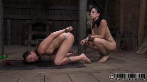 Saturday Night Fever - Hailey Young BDSM