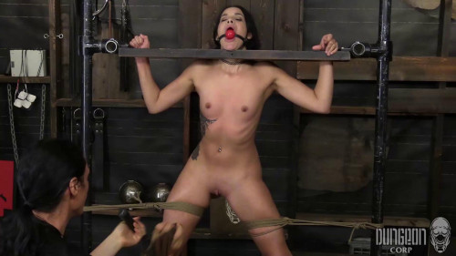Submitting to His Command Eden Sinclair