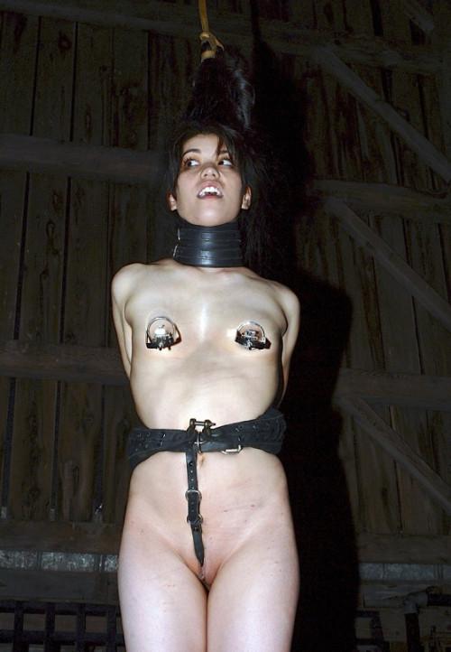 Felonie Caged
