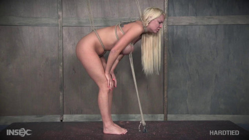 The Package - Kenzie Taylor , HD 720p BDSM