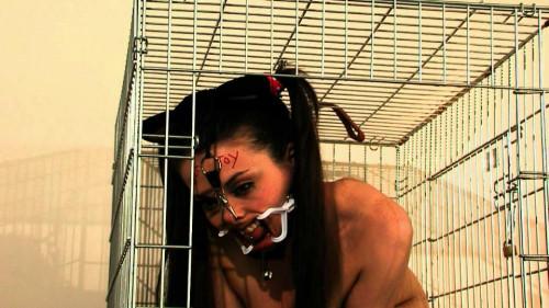 Petgirls Porn Videos Part 21 ( 10 scenes) MiniPack