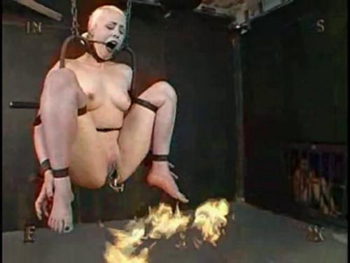 Insex - Bifurcation