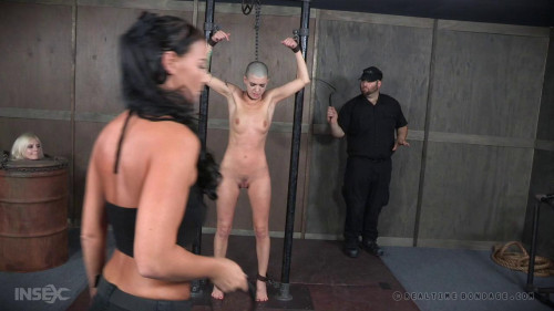 Tasty Part 1 BDSM