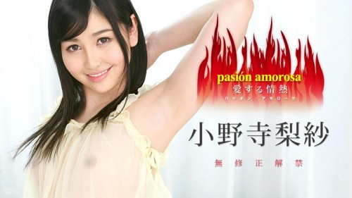 Passion to Love 5 : Risa Onodera