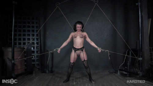 Maria Jade dominated animalism Insex play room