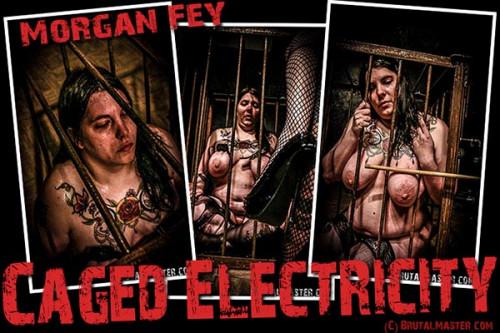 Morgan Fey - Caged Electricity