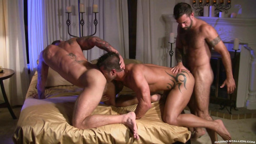Passion anal games