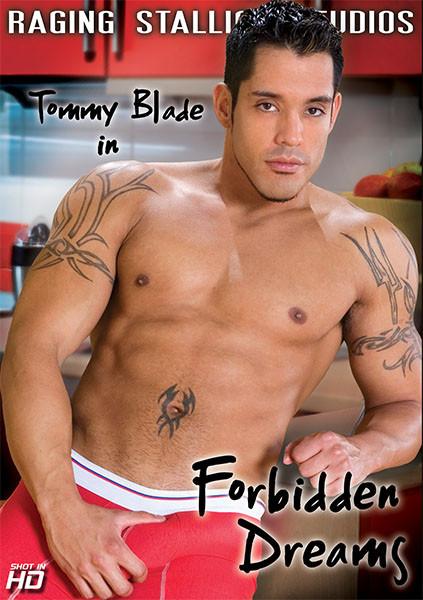 Forbidden Dreams Gay Movies
