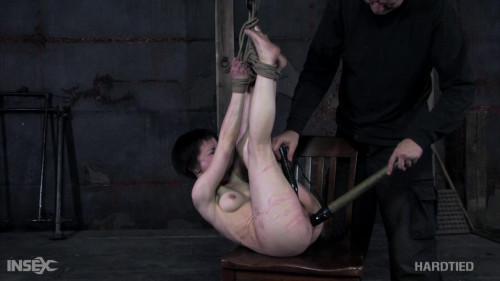 Painful Delights BDSM