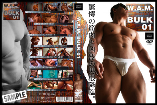 JP - W.A.M. Bulk 01