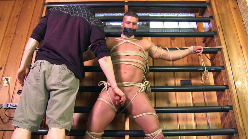 Muscle dude C and B tortured neill vol. 208