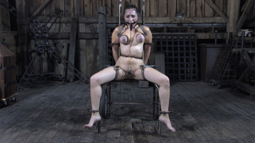 Slave Dee-The Fly (Bonus)