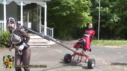 HouseofGord Videos 2013-2014, Part 3