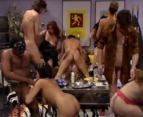 Bi Party Bisexuals