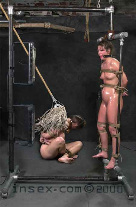 Insex - Tyler Scots Live Feed November 19 ()