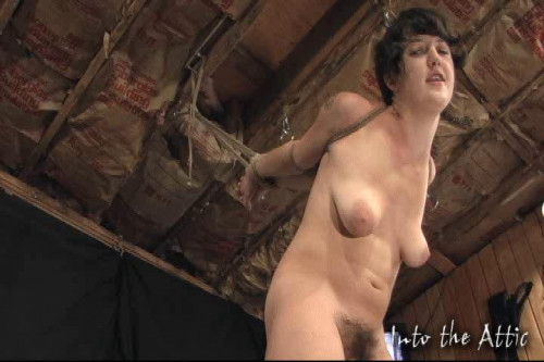 Wonderfull Sweet Vip Gold Collection Of IntoTheAttic. Part 2. BDSM