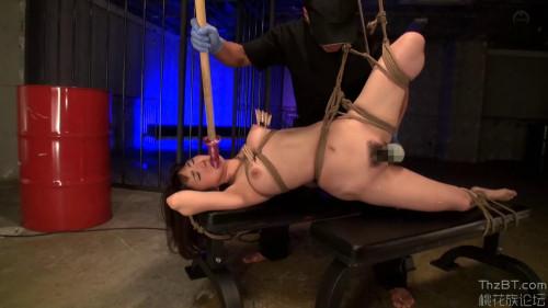 Masotronix - part 8 BDSM