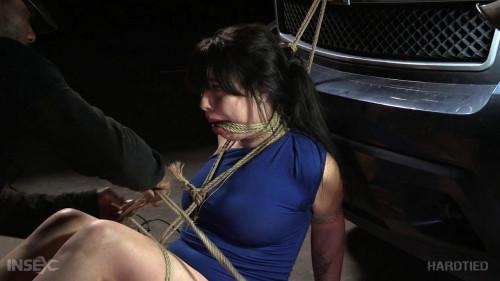 Re-fine-Ass BDSM