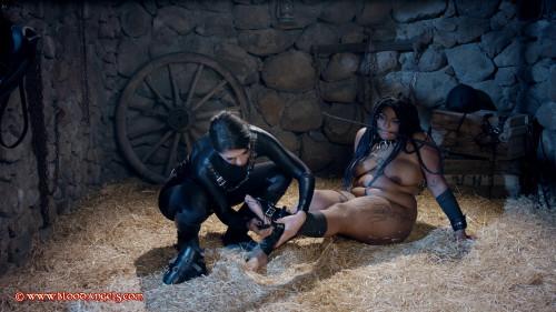 Black Beauty - Part 2 - Venus Black & Estigia