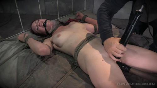 Ashley Lane - Cunt Puppy, Part 3 BDSM