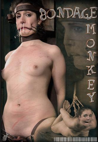 Bondage Monkey Part 2 (02 May 2015)