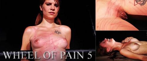 ElitePain - Wheel of Pain 5 HD 2014