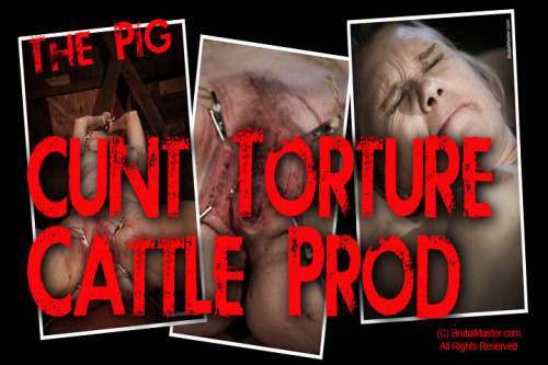 The Pig Cunt Torture Cattle Prod