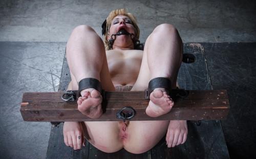 Elizabeth Thorn- Futile Resistance