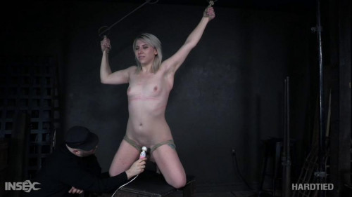 Caned, flogged & whipped