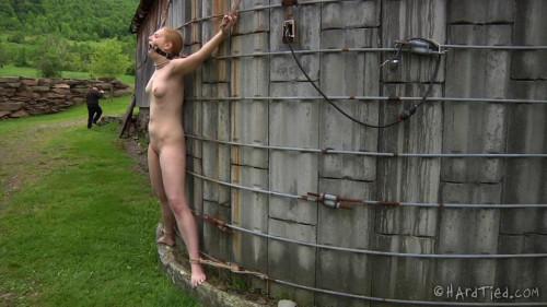 Delirious Hunter Blondie in Bondage BDSM