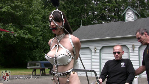 Training the Trainer BDSM