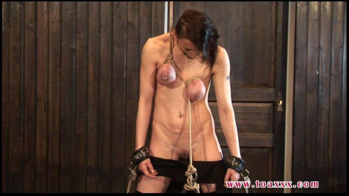 Toaxxx - (tx215) Tit Slave Eva Breast Torture - March 19, 2016