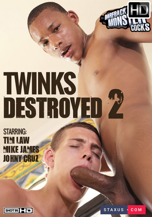 Twinks Destroyed vol.2 Gay Movies