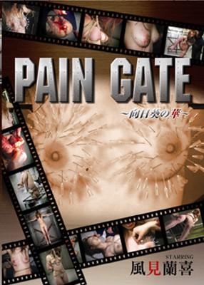Scrum - Pain Gate