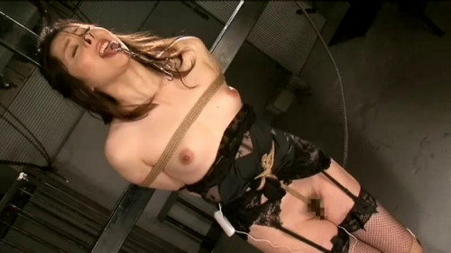 Nipple torture Collection 2