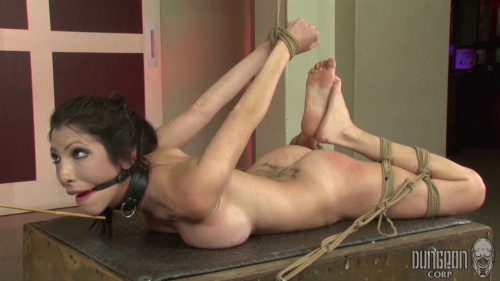 Domming a Domme
