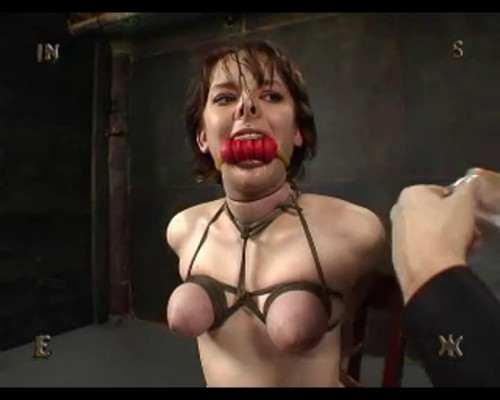 Insex part 423 Test BDSM