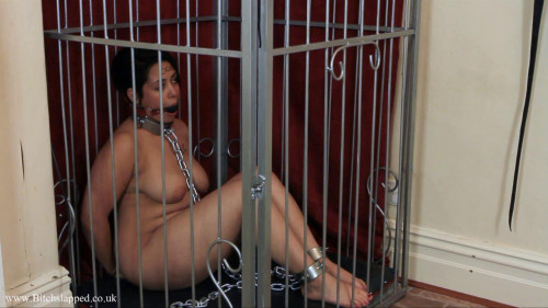 BitchSlapped busty caged