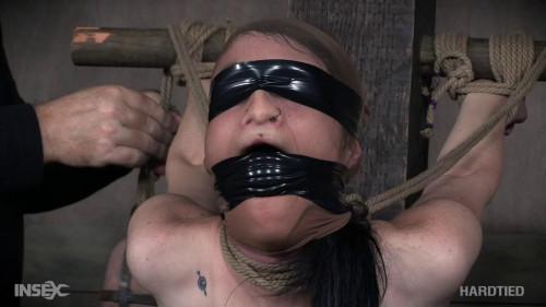 Neck Tied - Lydia Black
