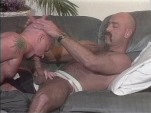 Raw Fuck For Hairy Asses Gay Retro